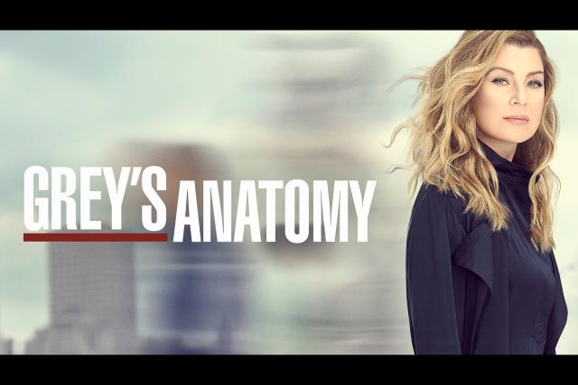 Grey's Anatomy Staffel 16 Keyvisual